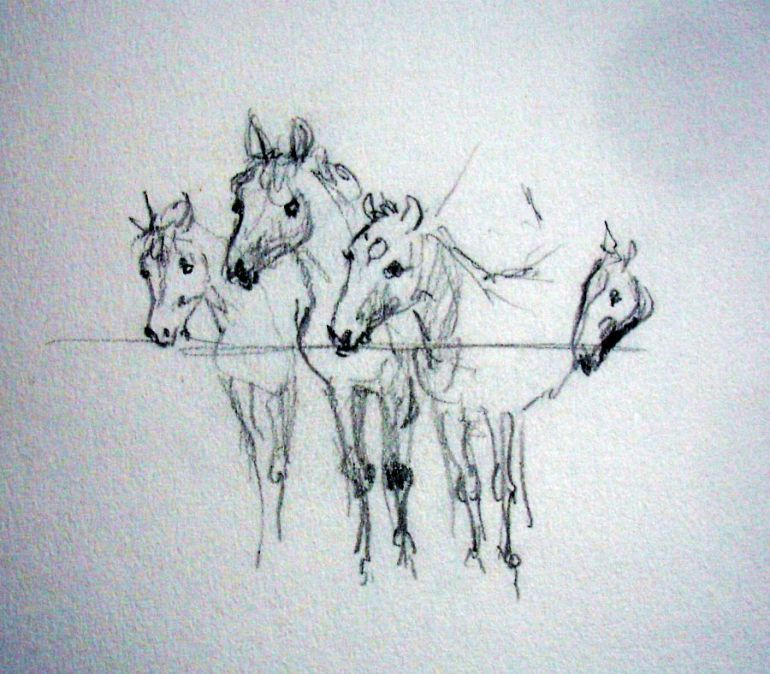 zuidlaardermarkt Horse fair art sketch1