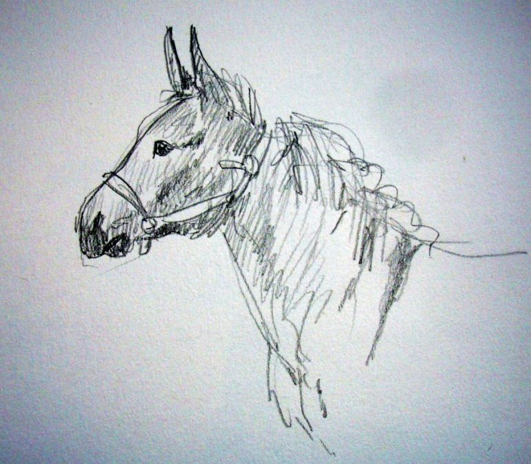 zuidlaardermarkt Horse fair art sketch3