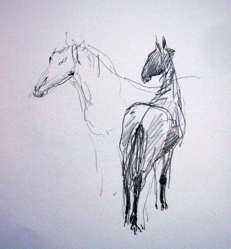 zuidlaardermarkt Horse fair art sketch9