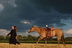 American Eagle saddle horse aafke art