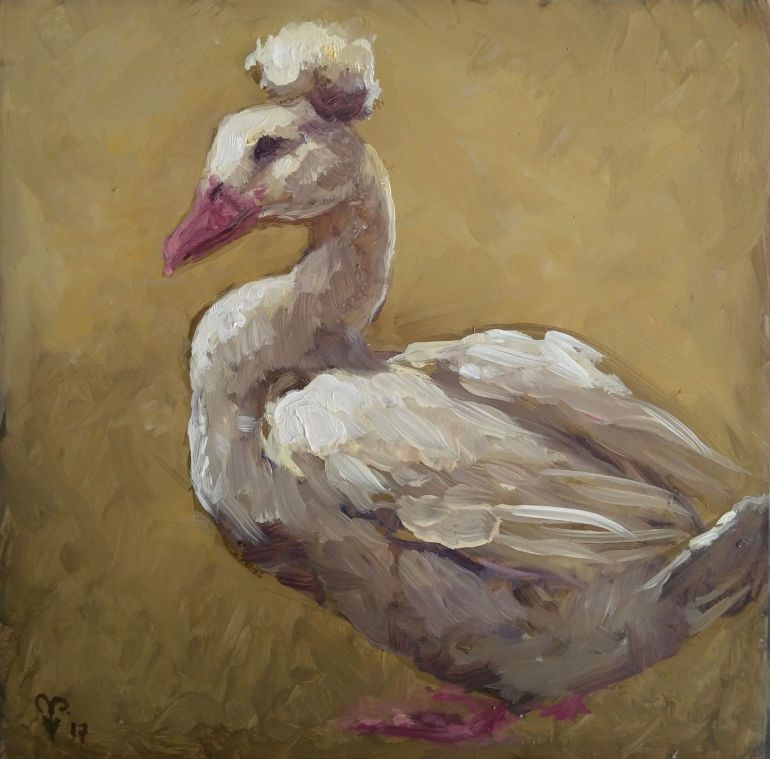 Duck oil painting aafke art